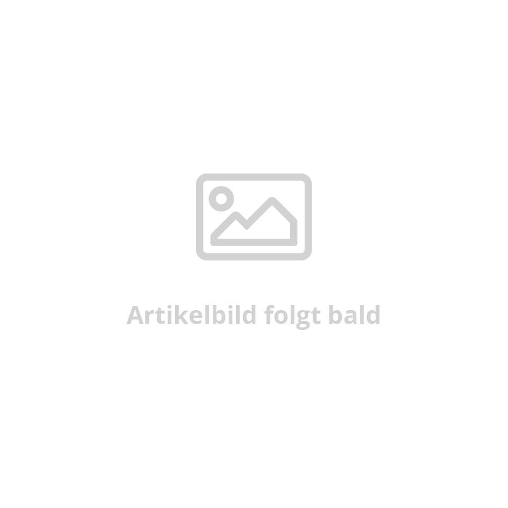 Elektrifizierung
